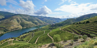 2018 Oakleaf Douro River Cruise